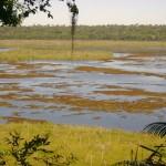 Lagoa da Região